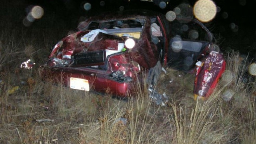 Two people hurt, dog dead after car hits bear on I-84 | KATU