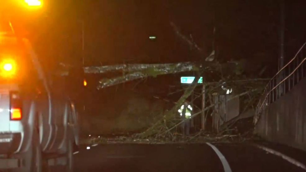 Tree causes delays for drivers on eastbound Highway 30 | KATU on portland traffic, wftv traffic, wkyc traffic, abc news traffic, san clemente traffic, koin traffic, kgw traffic,